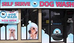 Self Serve Station for Dog Wash